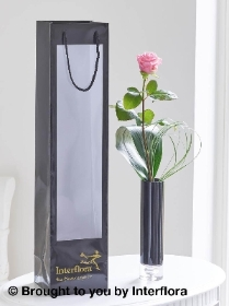 Single Pink Rose Vase with 125g Maison Fougere Chocolates
