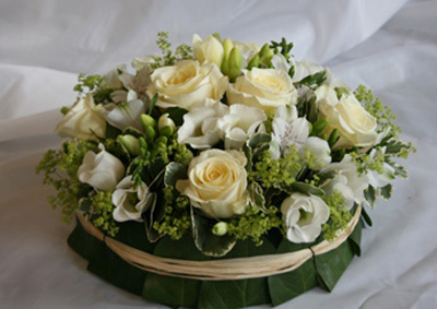 Cream & White Posy